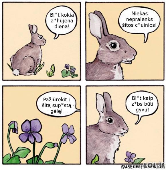 Optimistas kiškutis