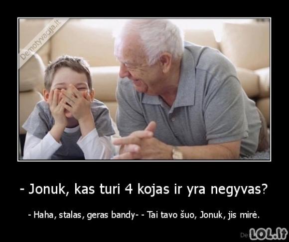 Senelis prie bajerio