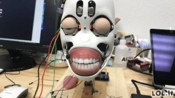 Sekso robotų gamykla iš vidaus