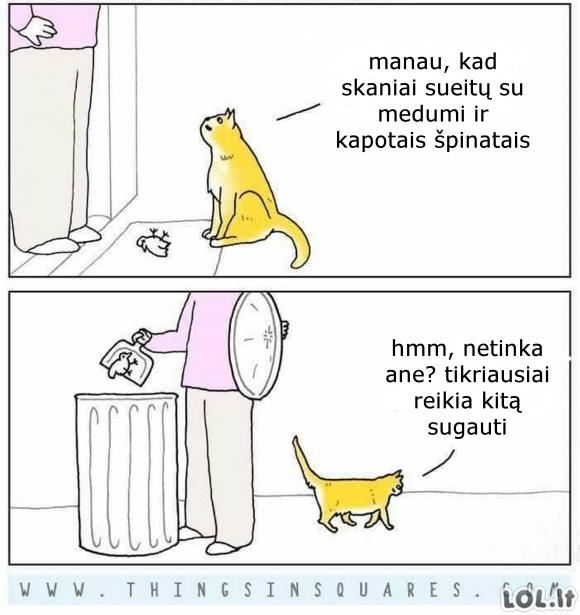 Katė gurmanė