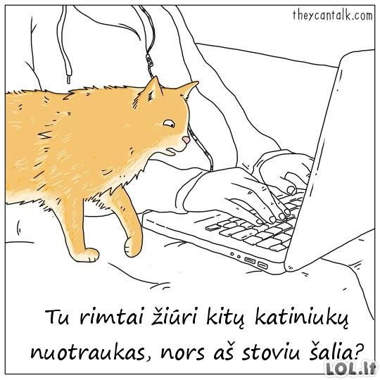 Gyvūnų pakalbėjimai [2 dalis]