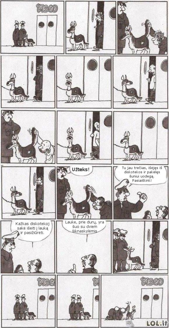 Nestandartinis šuo