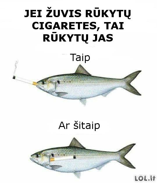 Jeigu žuvys rūkytų