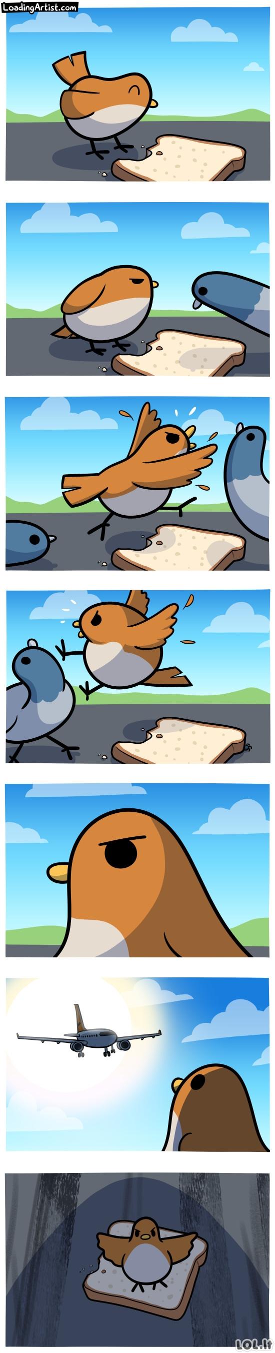 Piktas paukštukas