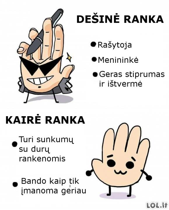 Skirtingos rankos