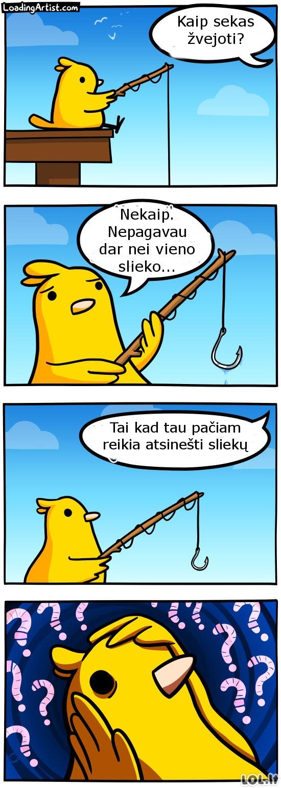 Žioplas paukštis žvejys