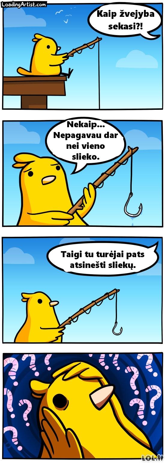 Paukštelis žvejyboje
