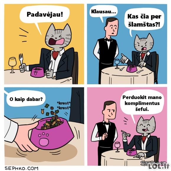 Katinas restorane