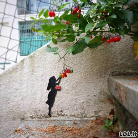 Dienos foto perliukai [20 FOTO]