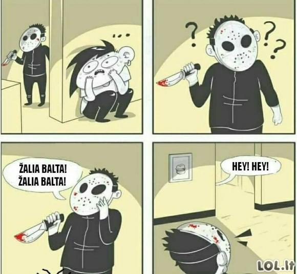 Kaip sumedžioti Žalgirio faną
