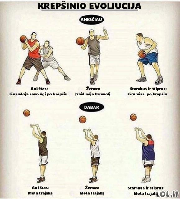 Krepšinio evoliucija
