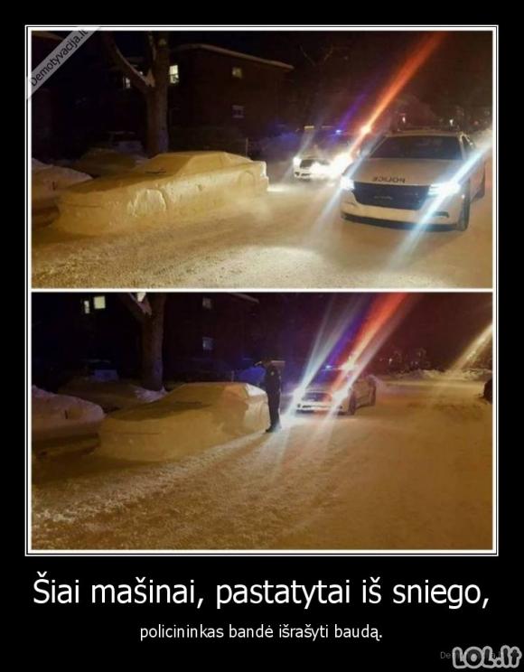 Policijos feilas
