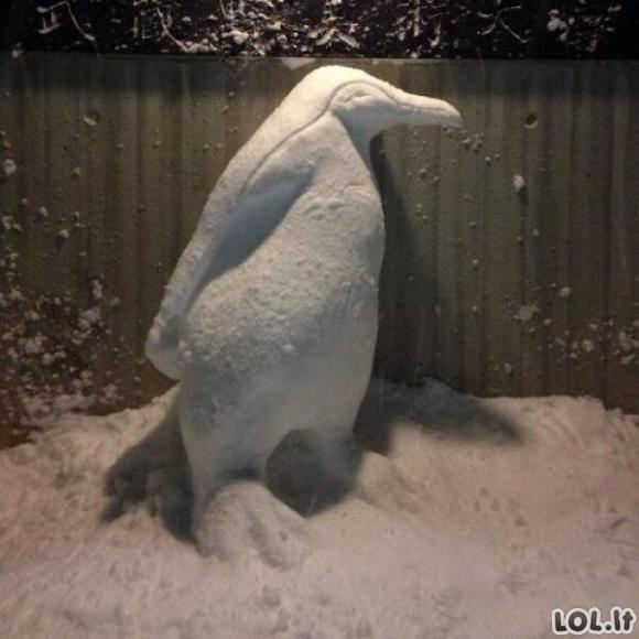 Japoniški sniego seniai [38 FOTO]