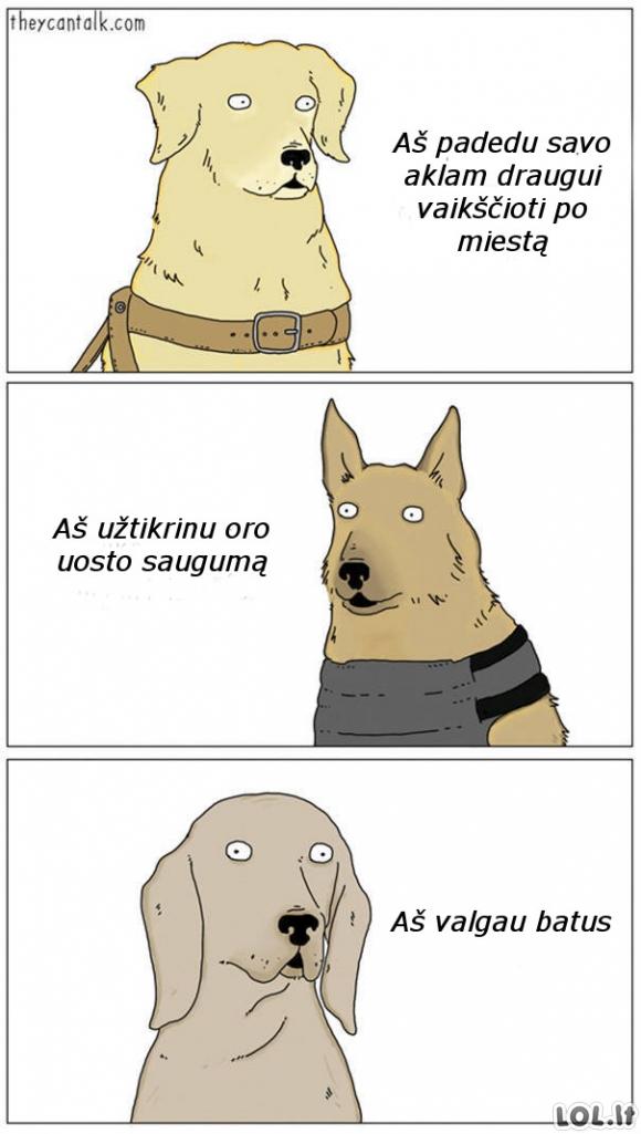 Skirtingi šunų tipai