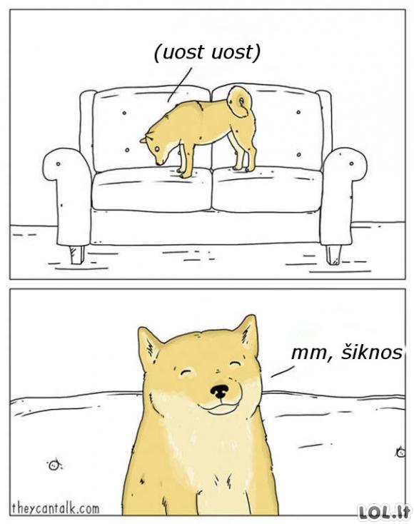 Šuo gurmanas