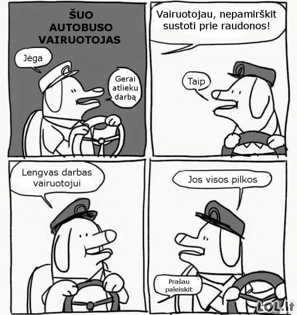 Šuo autobuso vairuotojas
