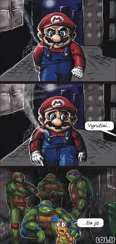 Mario galas