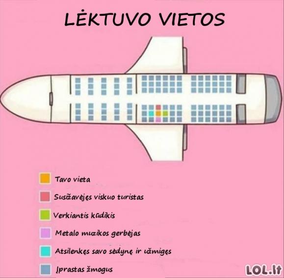 Vietos lėktuve