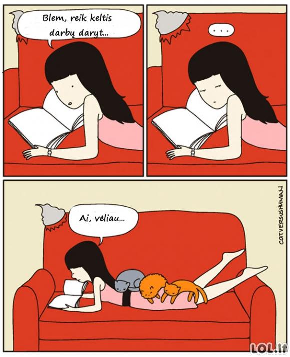 Katės paralyžius
