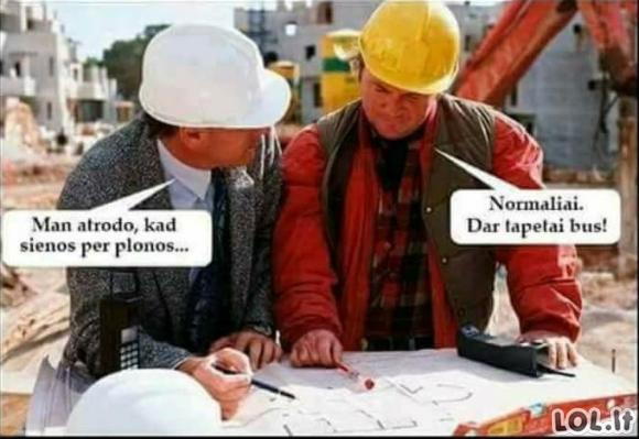 Statybininkų pagudravimai