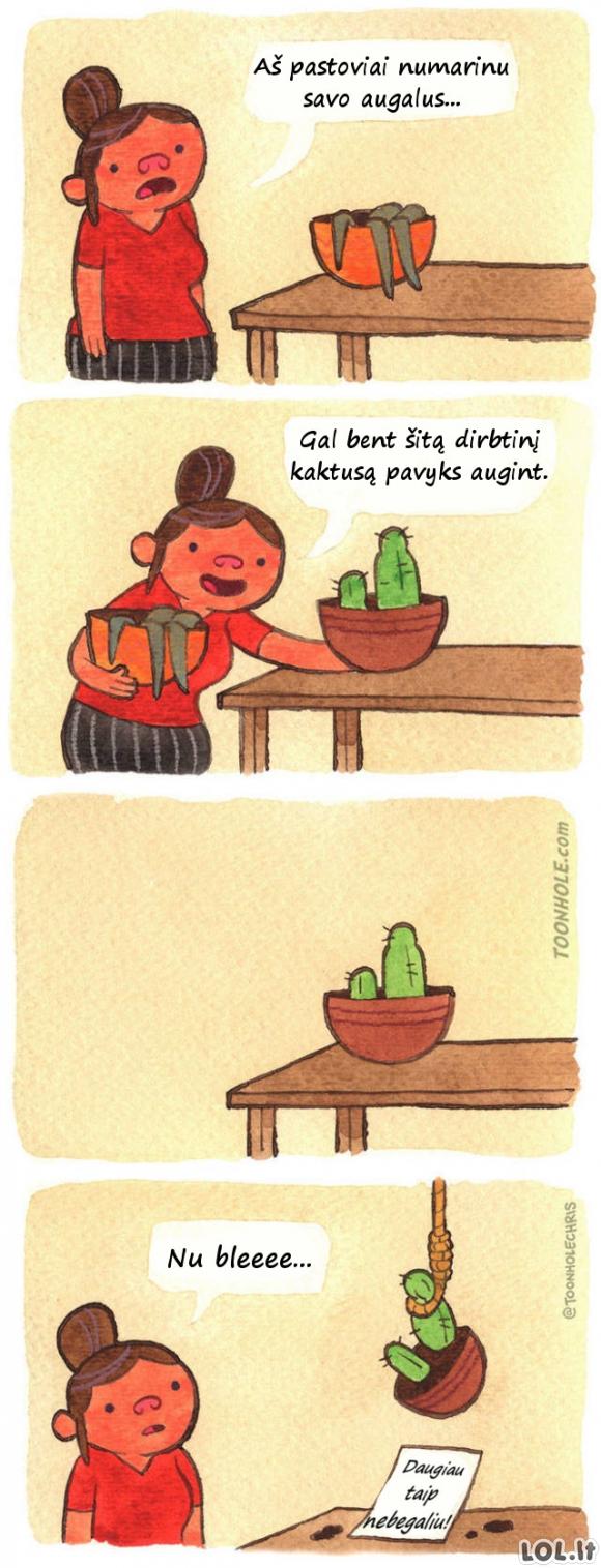 Kai visiškai nemoki auginti gėlių