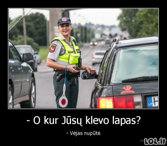 Vadeliotojas ir policija