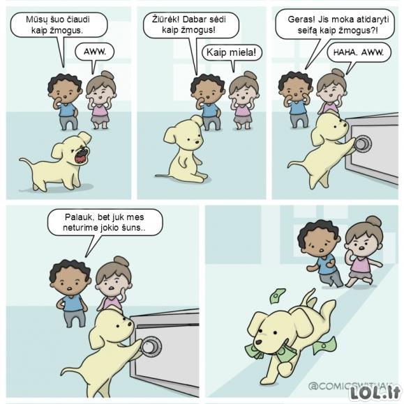 Šuns triukai