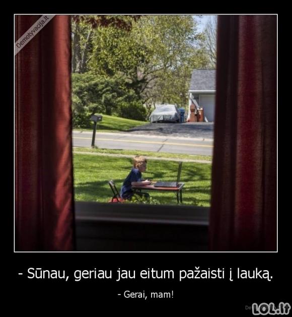 Genijai, gyvenantys tarp mūsų (26 nuotraukos)