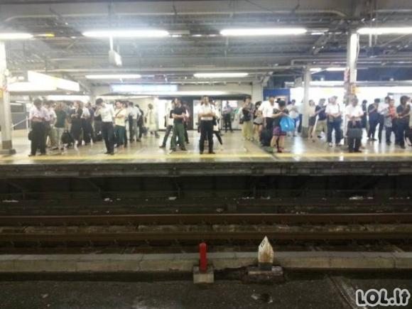 Japonija - pažangi šalis (12 paveikslėlių)