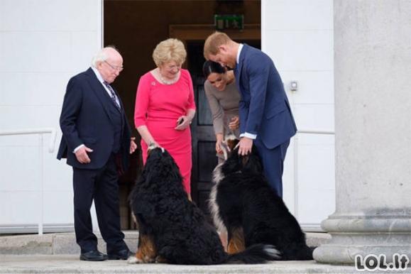 Štai kodėl žmonės Airijoje mėgsta savo prezidentą [26 paveikslėliai]