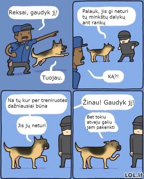 Humaniškas šuns šuo