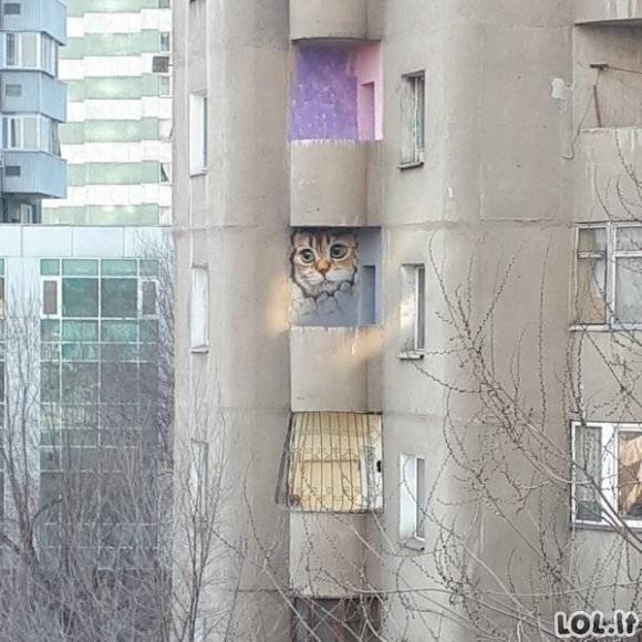 Įspūdingiausias gatvės menas [GALERIJA]