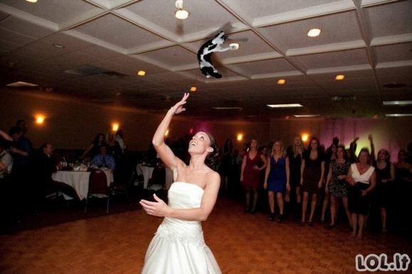 Nuotakos mėto kates vietoj puokščių (20 nuotraukų)