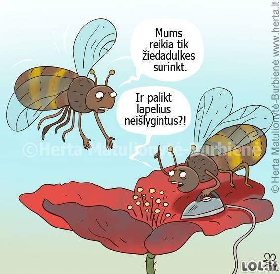 Bitė - perfektionistė