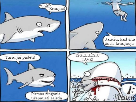 Ryklys gelbėtojas