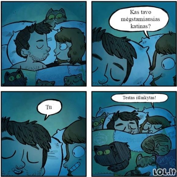 Mylimiausias katinas