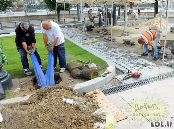Žmonės labai pasigailėjo, jog pasamdė šiuos statybininkus (36 nuotraukos)