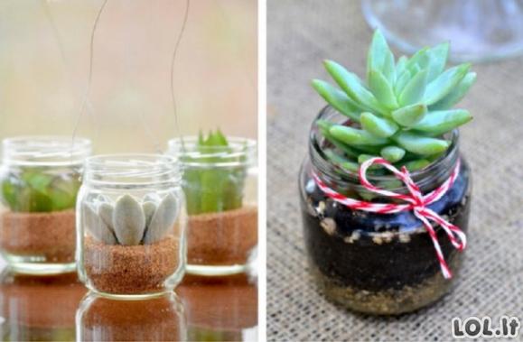 Fantastiškos idėjos, kurios patars Jums, kaip galite panaudoti senus stiklainius