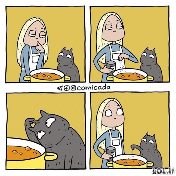 Katinas prisideda prie sriubos gaminimo