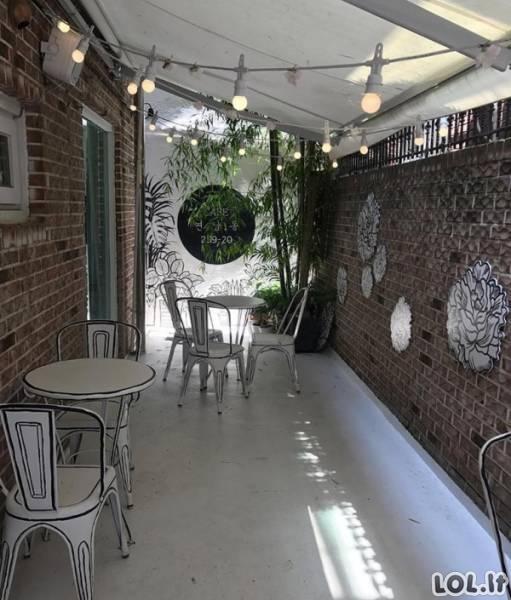 Kavinė, kuri atrodo kaip nupiešta (10 nuotraukų)