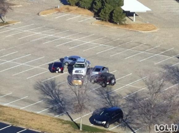 Vairuotojai, kurie buvo nubausti už įžūlų parkavimąsi