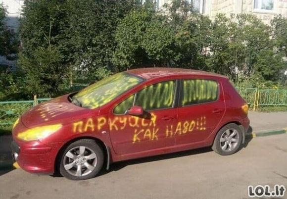 Negailestingos bausmės už blogai priparkuotą automobilį (25 nuotraukos)