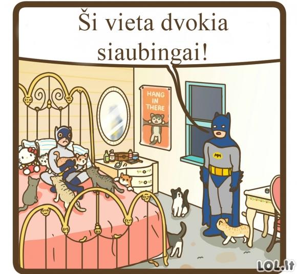 Betmenas ir Moteris-Katė