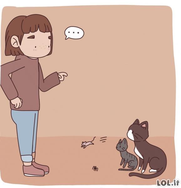 Katinai, neatliekantys savo darbo