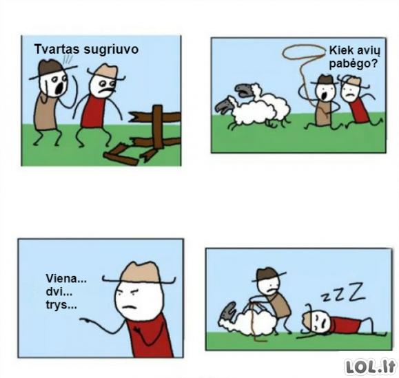 Pabėgo avys