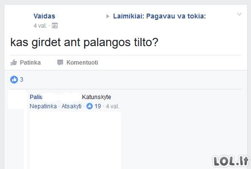 Tai gali pamatyti tik Lietuvoje (32 nuotraukos)