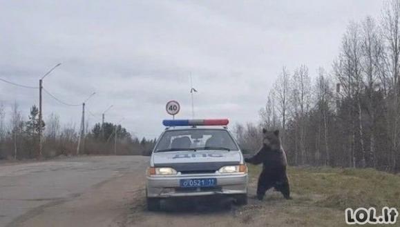 Protu nesuvokiamos rusų nuotraukos (44 nuotraukos)