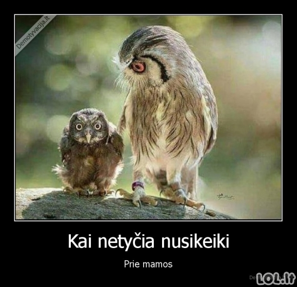 Keiksmažodžiai prie mamos