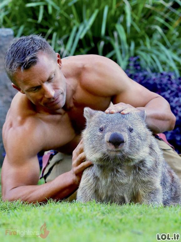 Australijos gaisrininkai fotografuojasi su gyvūnais 2019 metų kalendoriui