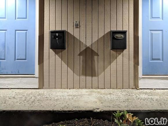 Šešėliai turi savo atskirą gyvenimą (30 nuotraukų)